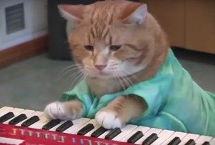 keyboard-cat-5426dcd520d6d856